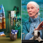 Jane Goodall lakberendezési kollekciója