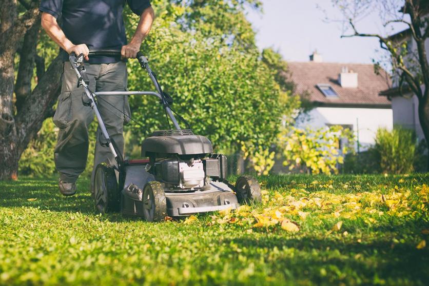 fűnyírás, ősz, kerti munka, gyepápolás