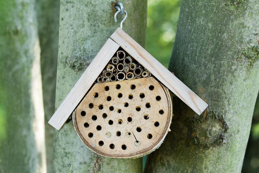 méhecskehotel