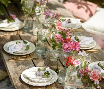 muskátli, kert, kertészkedés, kreatív kert, dekoráció muskátlival