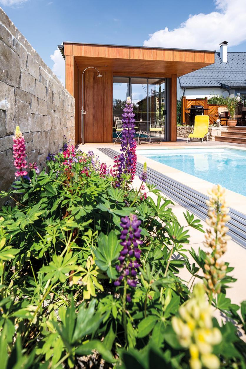 úszómedence, kert, kert kialakítás, kerttervezés, pool