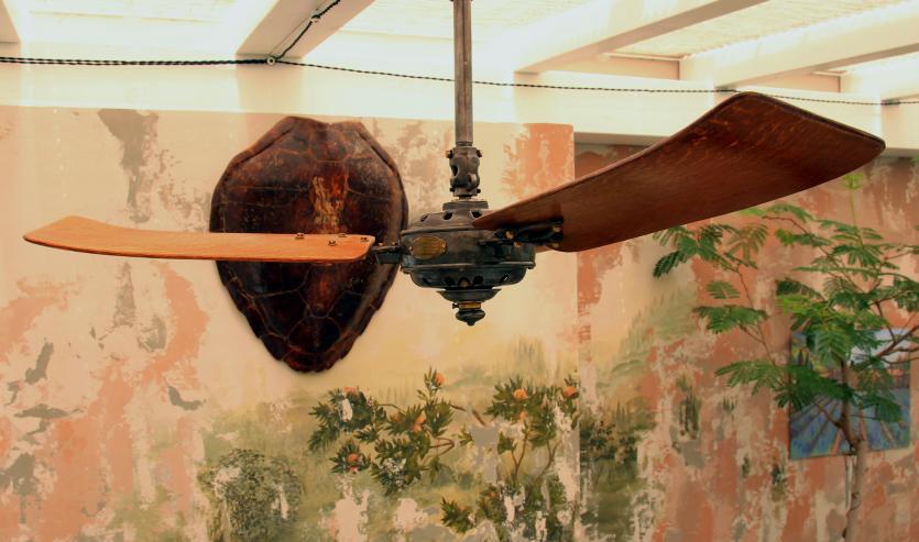 freskó, ventilátor, gyarmati, koloniál, télikert
