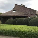 A modern kertstílus egyik jellegzetessége, a mirtuszlonc