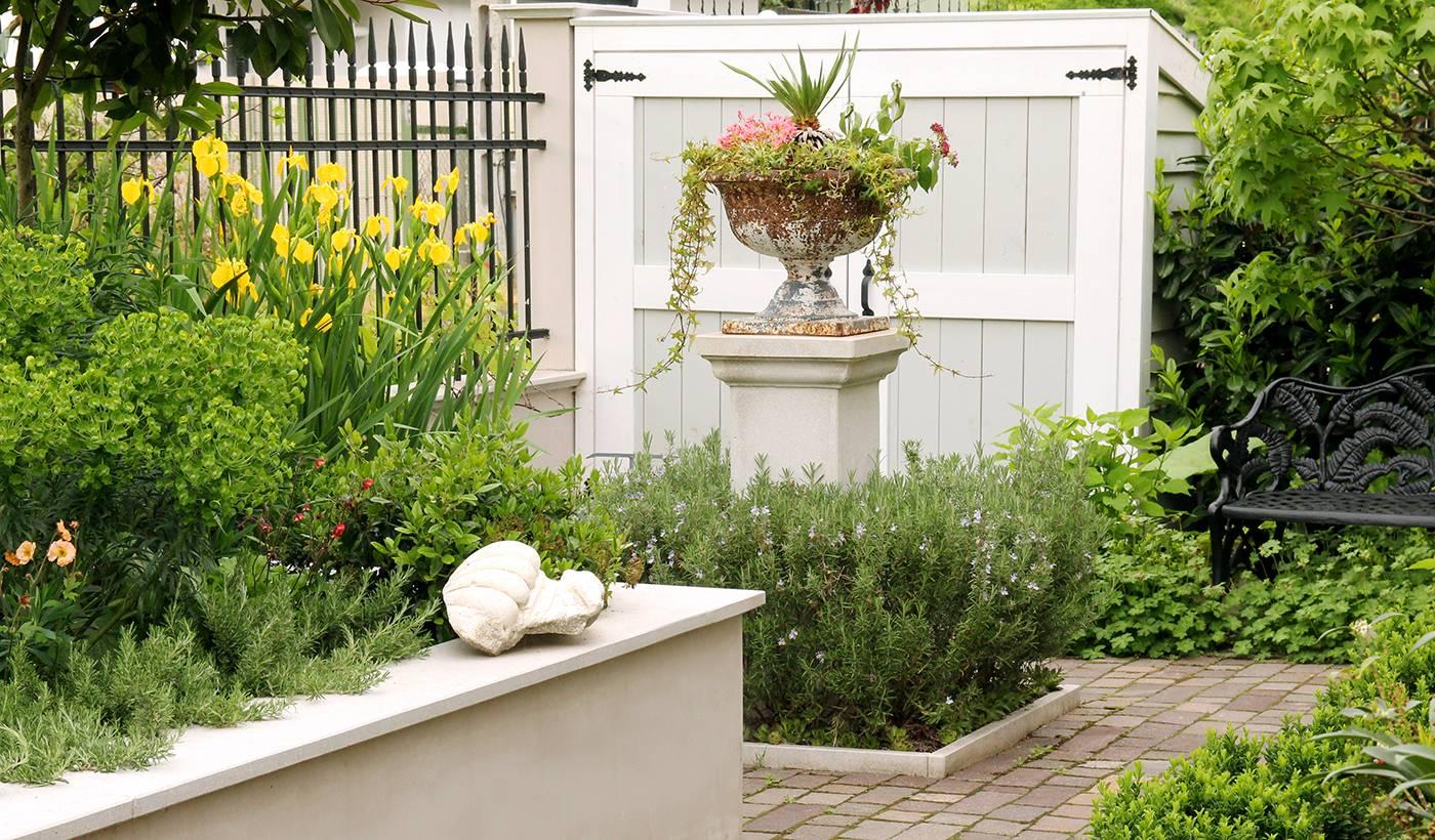 előkert, rozmaring, kert