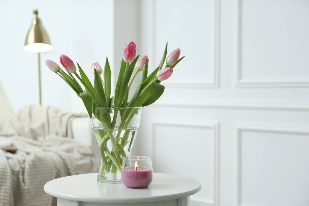 tulipán, asztal, illetgyertya